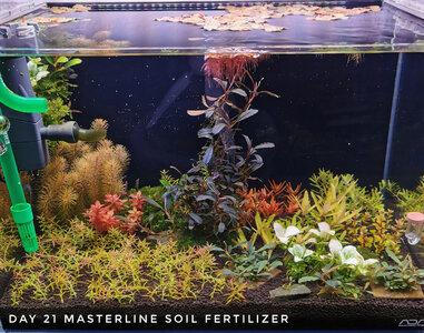 Masterline Soil Day 21 06.12.2020 Forum.jpg
