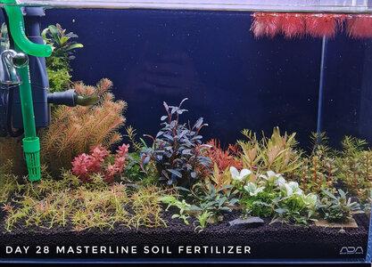 Masterline Soil Day 28 13.12.2020 Forum...jpg