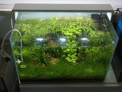glasgarten1.jpg