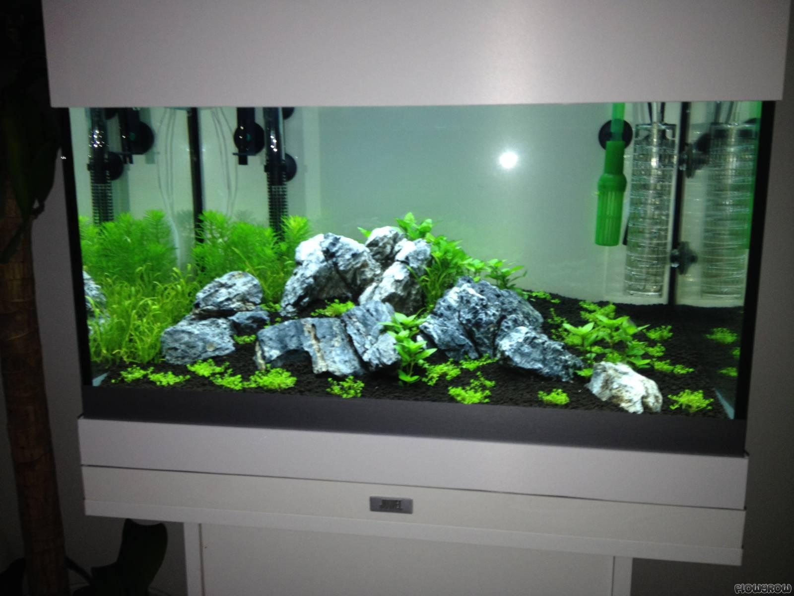 juwel lido 120 umbau flowgrow aquascape aquarien datenbank. Black Bedroom Furniture Sets. Home Design Ideas