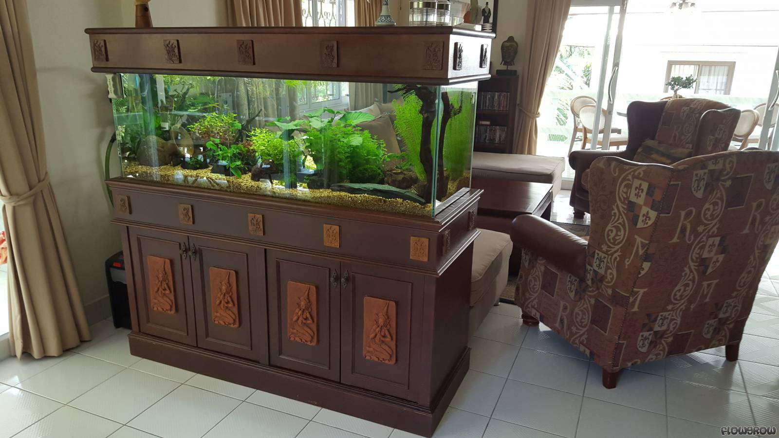 koh samui natural flowgrow aquascape aquarien datenbank. Black Bedroom Furniture Sets. Home Design Ideas
