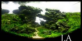 Across Iceland - Flowgrow Aquascape/Aquarien-Datenbank