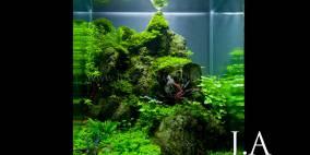 Circle of Life - Flowgrow Aquascape/Aquarien-Datenbank