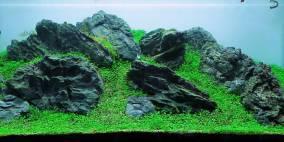Grey Rocks - Flowgrow Aquascape/Aquarien-Datenbank