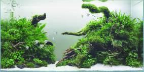 Mekongdelta - Flowgrow Aquascape/Aquarien-Datenbank