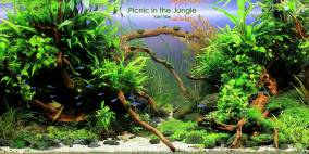 A Picnic in the Jungle - Flowgrow Aquascape/Aquarien-Datenbank