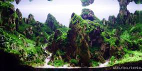 Sherpas way home - Flowgrow Aquascape/Aquarien-Datenbank