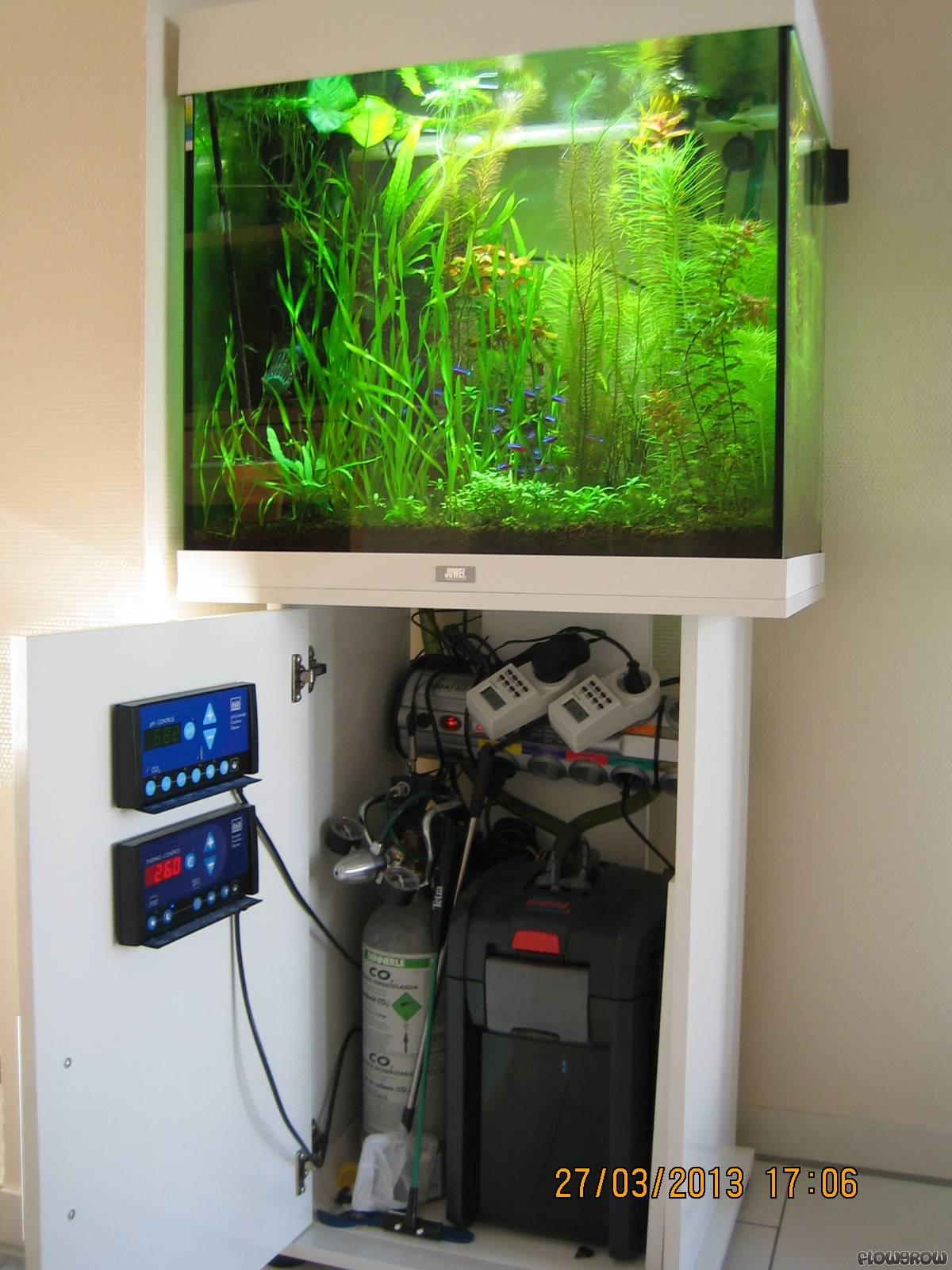 Juwel Lido 120 Flowgrow Aquascape Aquarium Database